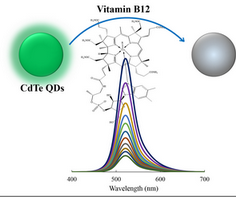 Development of a sensitive B12 determination method based on inner filter effect on CdTe quantum dots