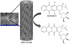 Development of electrochemical sensor based on multiwall carbon nanotube for determination of anticancer drug idarubicin in biological samples
