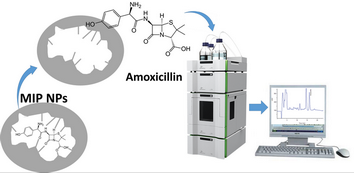 Separation and determination of amoxicillin in wastewater samples using molecularly imprinted polymer nanoparticles followed by HPLC-UV